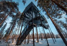 7th_Room_Treehotel-travel-kontaktmag-12